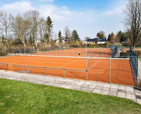 Sanierung der Außenplätze   Tennisclub Blau-Weiß Lemgo